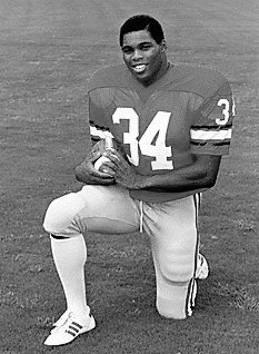 Herschel Walker: Professional Football Player